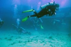 ocean-surveys11